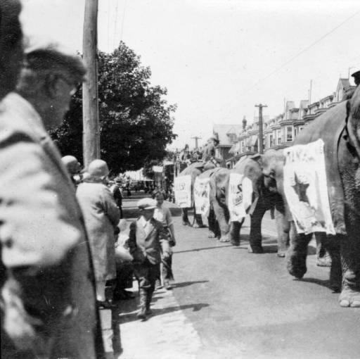 Title:  The Last Circus.  The image shows elephants from a circus parade passing through Wilmington in 1930.  Source:  Zebley-Hoffecker Collection, Hagley Museum & Library